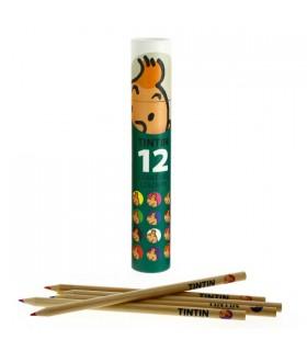 Boîte de 12 Crayons de Couleurs Verte Tintin